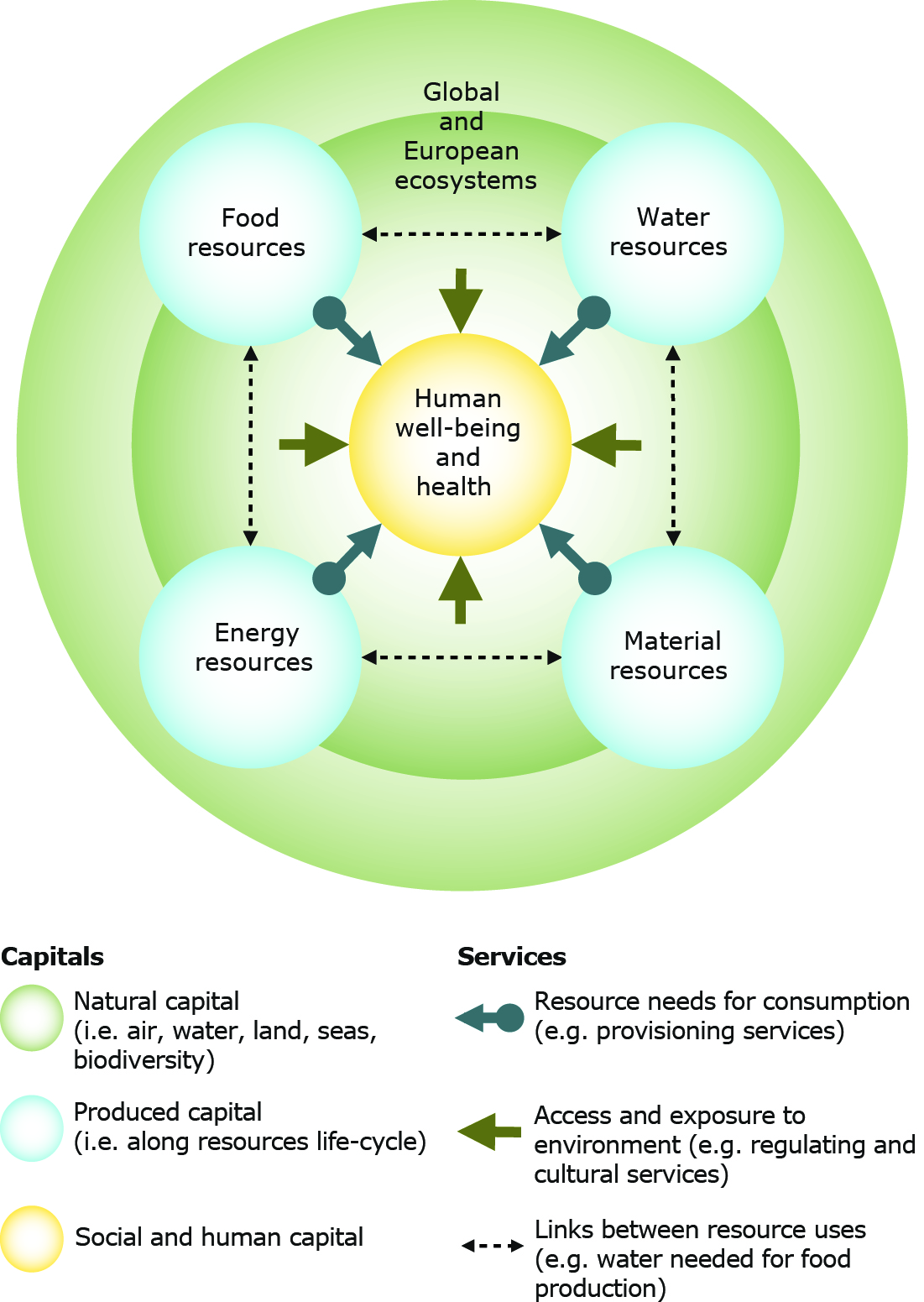 what is the impact of health policy on resourcing Health policy implementation is a much more challenging process, working   health system and ultimately taking effect or being blocked at the frontlines of   and policy time frames and resourcing may change unpredictably as a result of.