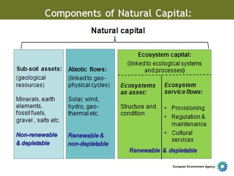Natural Resources Responsibilities