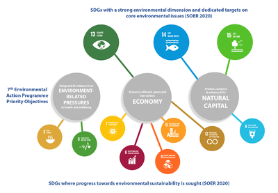 Figure 2: SDGs with an environmental dimension