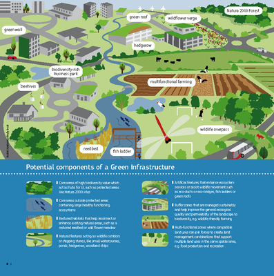 Potential components of a Green Infrastructure