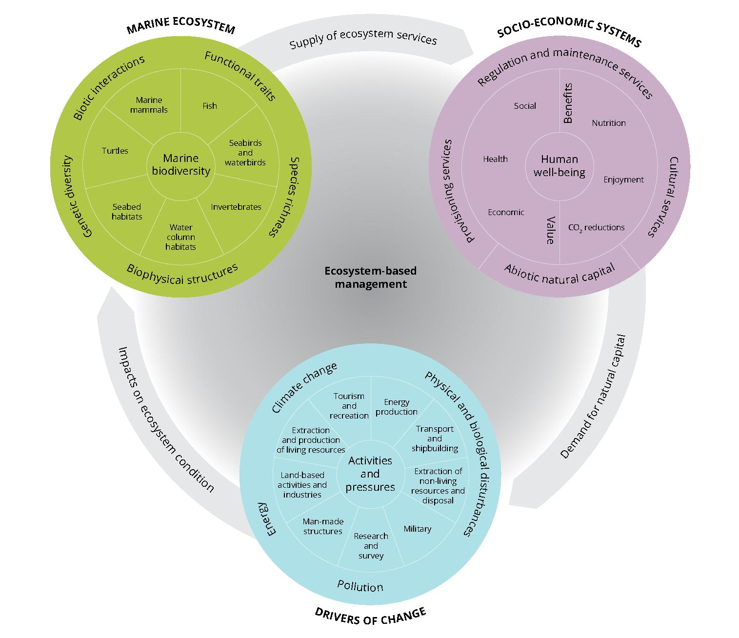 Ecosystem-based assessment