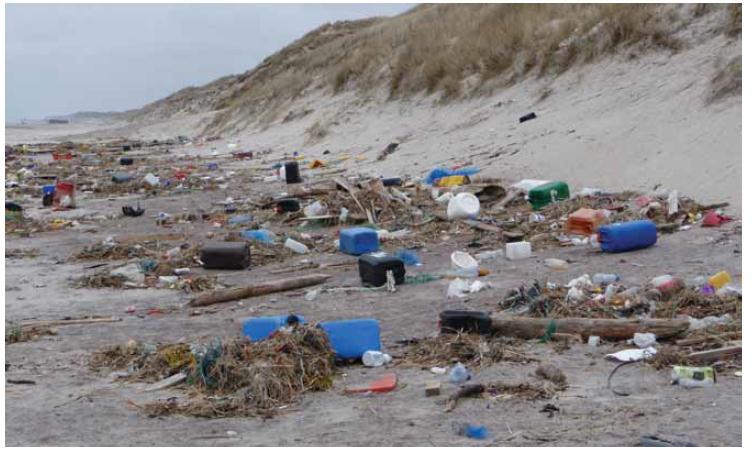 Marine litter on a beach.