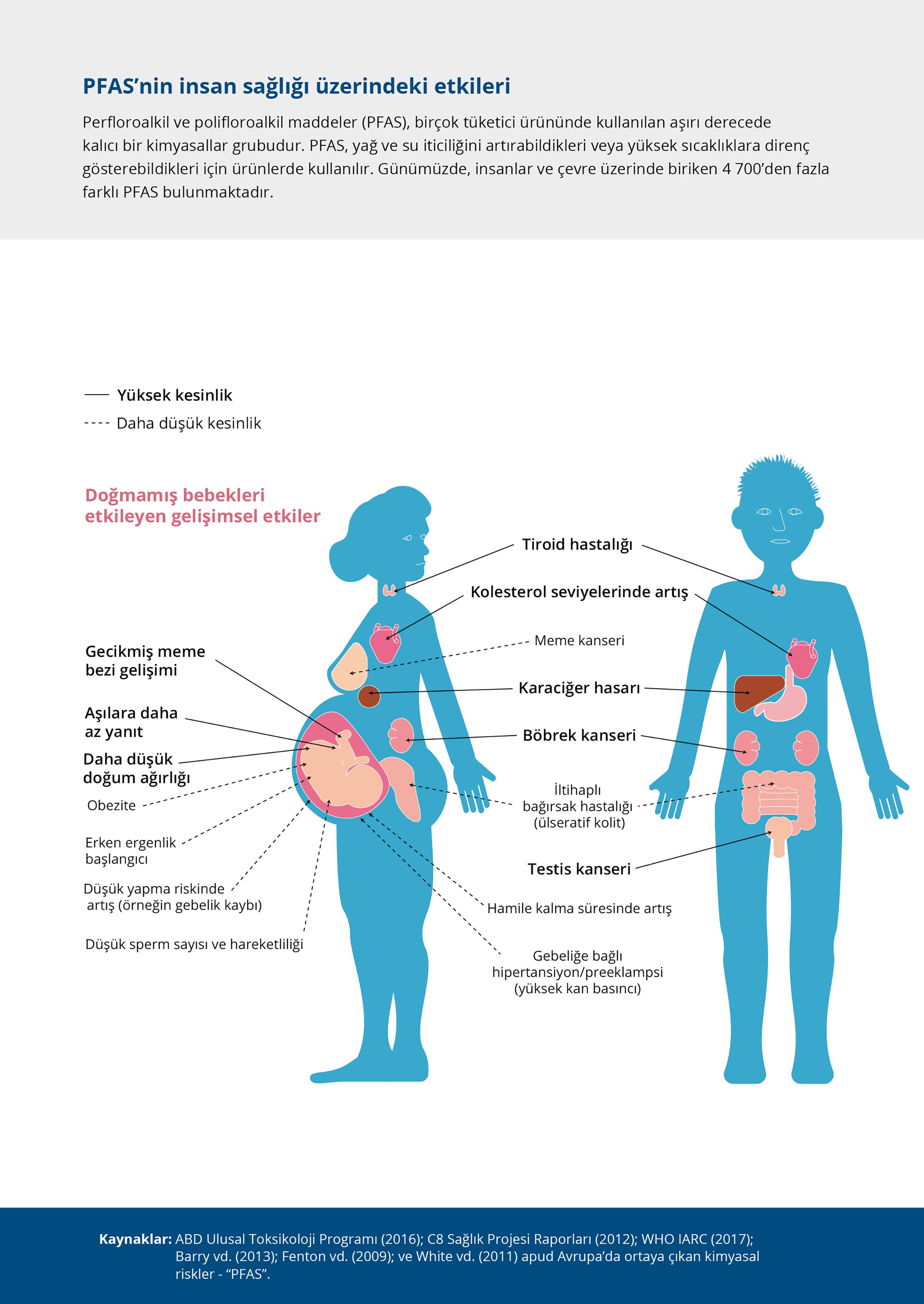PFAS'nin insan sağlığı üzerindeki etkileri