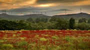 Arazi ve toprak: bu hayati kaynakların sürdürülebilir kullanımı ve yönetimine doğru
