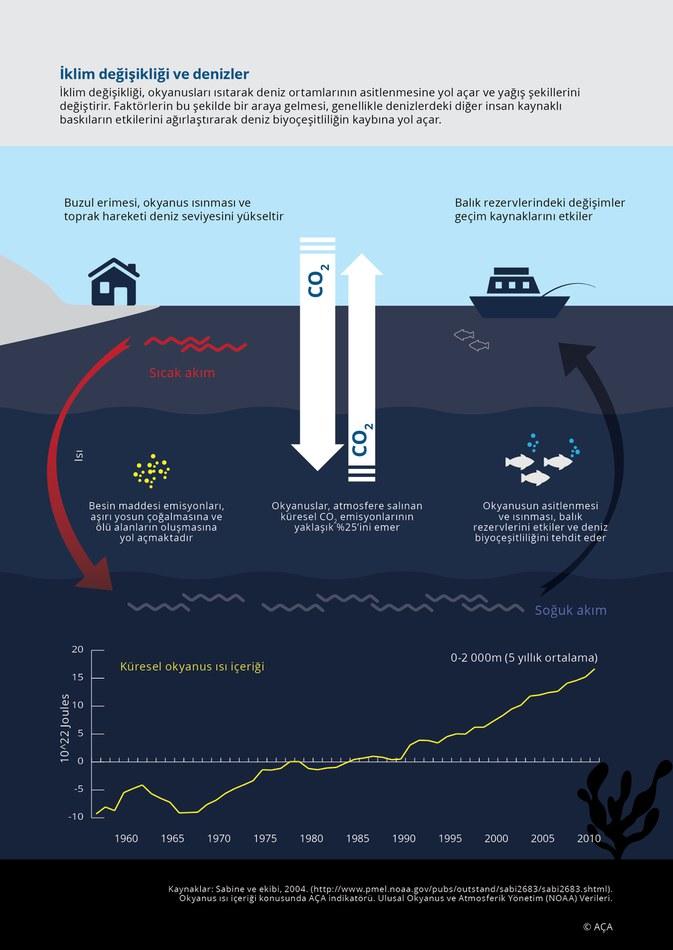 İklim değişikliği, okyanusları ısıtarak deniz ortamlarının asitlenmesine yol açar ve yağış şekillerini değiştirir. Faktörlerin bu şekilde bir araya gelmesi, genellikle denizlerdeki diğer insan kaynaklı baskıların etkilerini ağırlaştırarak deniz biyoçeşitliliğin kaybına yol açar.