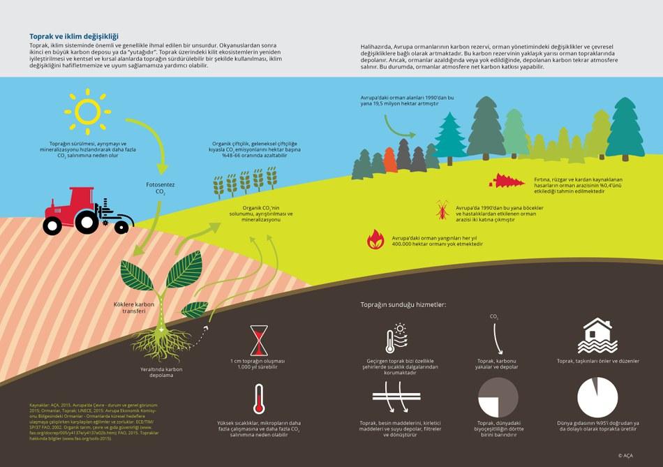 """Toprak, iklim sisteminde önemli ve genellikle ihmal edilen bir unsurdur. Okyanuslardan sonra ikinci en büyük karbon deposu ya da """"yutağıdır"""". Toprak üzerindeki kilit ekosistemlerin yeniden iyileştirilmesi ve kentsel ve kırsal alanlarda toprağın sürdürülebilir bir şekilde kullanılması, iklim değişikliğini hafifletmemize ve uyum sağlamamıza yardımcı olabilir."""